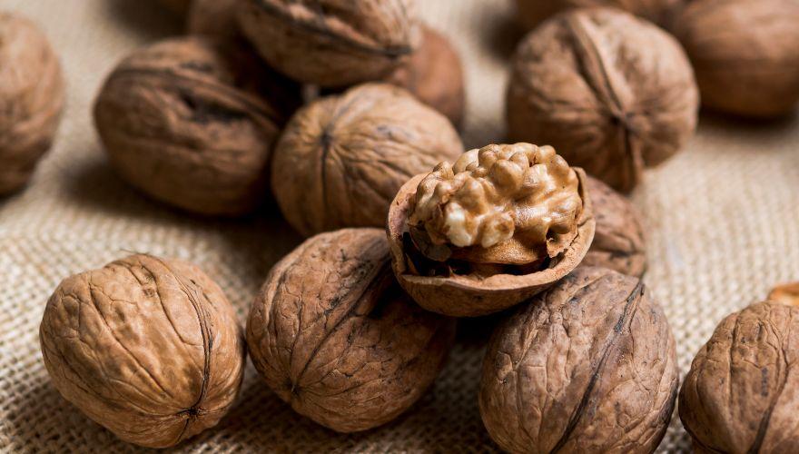 Nueces: conoce los tipos de estos frutos llenos de sabor