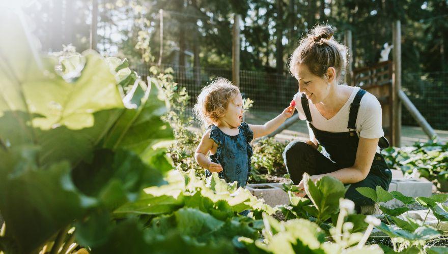 Agricultura sostenible: 4 acciones para apoyarla